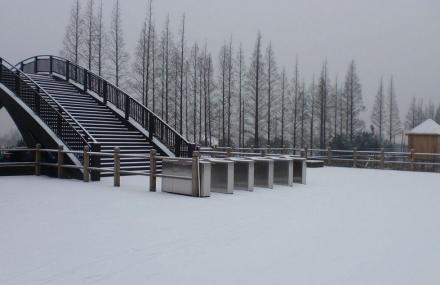 崇明明珠湖公园