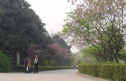 成都植物园