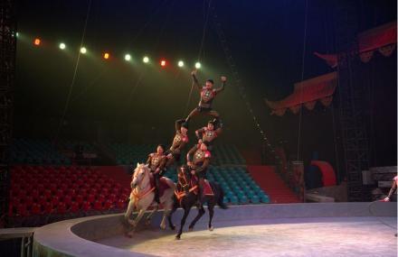 西安环球城国际大马戏