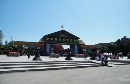 景点介绍 沈阳森林野生动物园由原沈阳市动物园(市区小河沿)搬迁新建