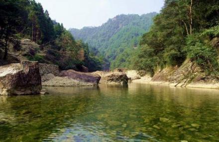 罗山国家级自然保护区森林植被资源监测与分析