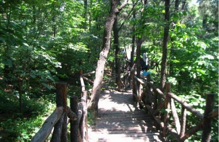 蒙山森林公园
