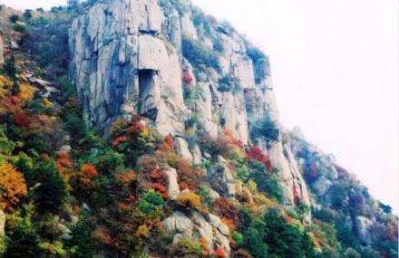 沂源国家森林公园