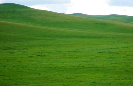 乌珠穆沁草原