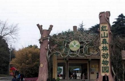 票价搜索 景点票价 南京 红山森林动物园  江苏省南京市玄武区和燕路