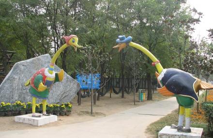 金鹭鸵鸟乐园