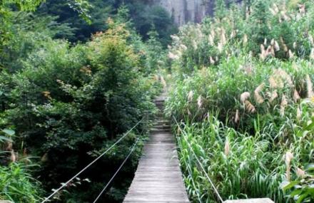 天井山国家森林公园