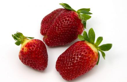 好乐草莓庄园