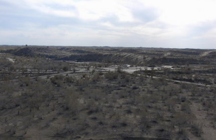 驼铃梦坡沙漠公园