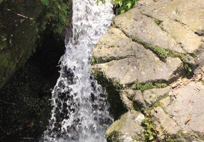 六盘水玉舍国家森林公园