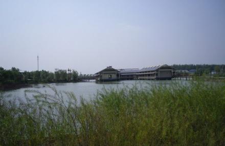 洪泽湖湿地森林公园