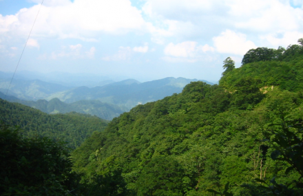板仓自然保护区