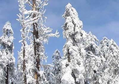 世界自然遗产,全国大型国家森林公园瓦屋山,位于四川省西部的洪雅