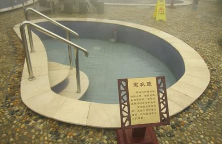老子山·温泉一号