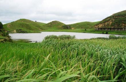 仰天湖草原风景区