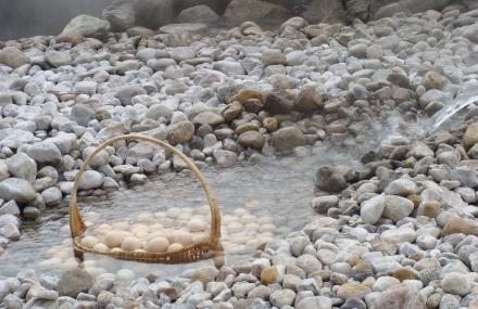 羊八井温泉