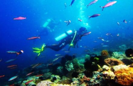 青岛奥帆中心蓝誉潜水体验
