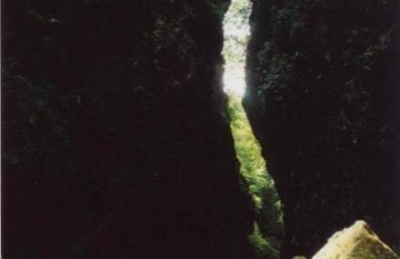 翠泉国家森林公园