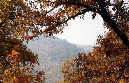 赤峰马鞍山国家森林公园