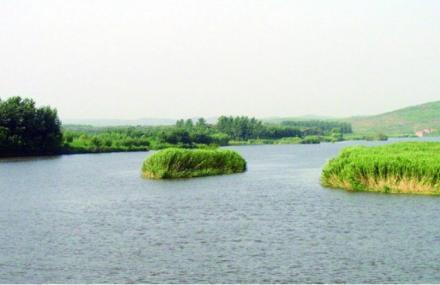 沭河湿地公园