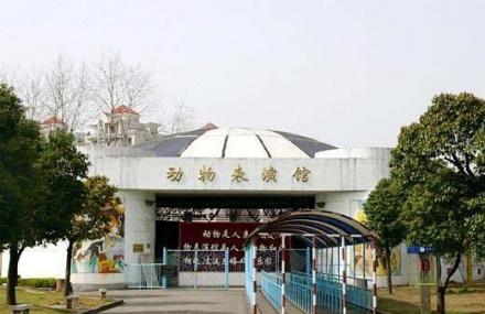 武汉动物园票价_武汉动物园门票价格