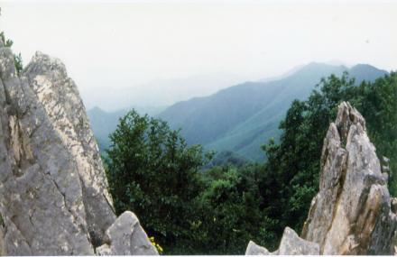 城子山省级森林公园