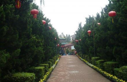 泰丰农业生态植物观光园