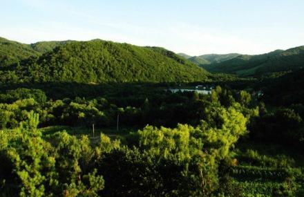 青山国家森林公园风景_双鸭山旅游景点介绍_风景图片_好桂林旅游