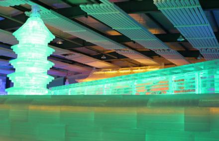上海世博冰雕艺术展