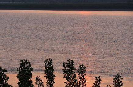黄河展区生态园