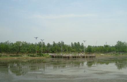 泗阳县生态公园
